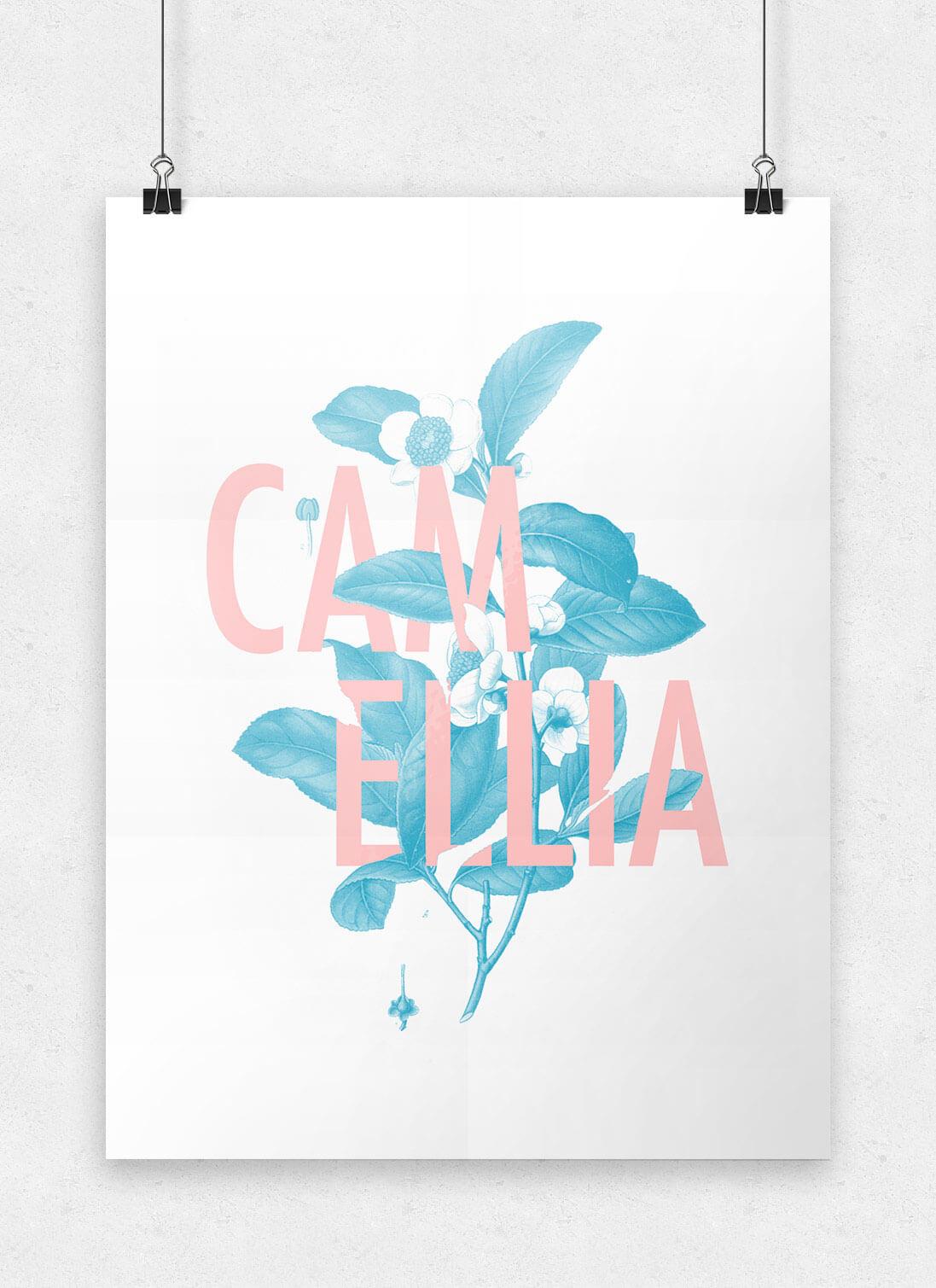 floral_poster_benharthun_camellia