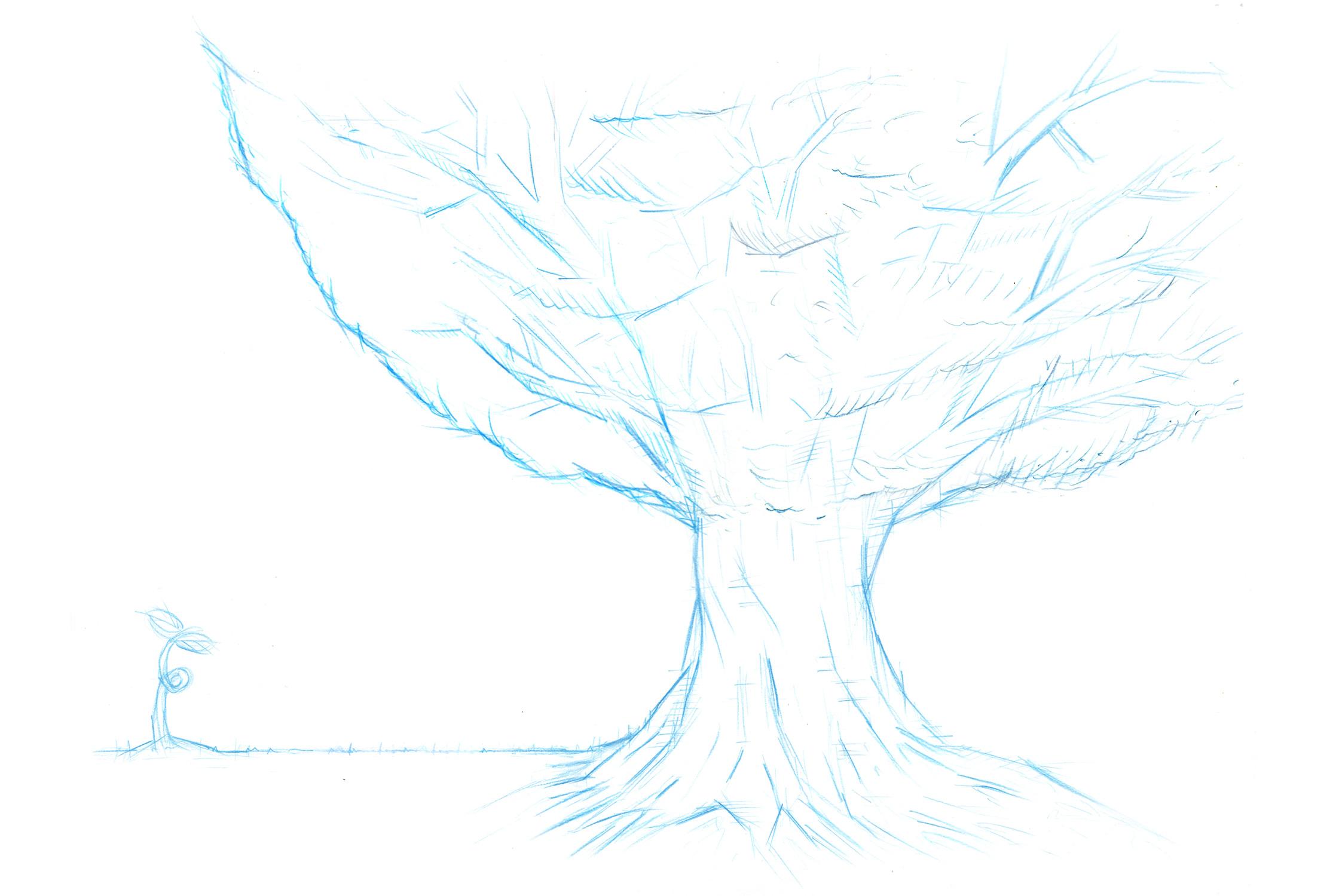 WEBSITE_AFTA_CoverSketchs_Tree