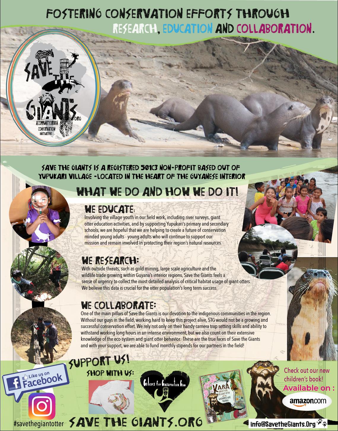 STG info poster