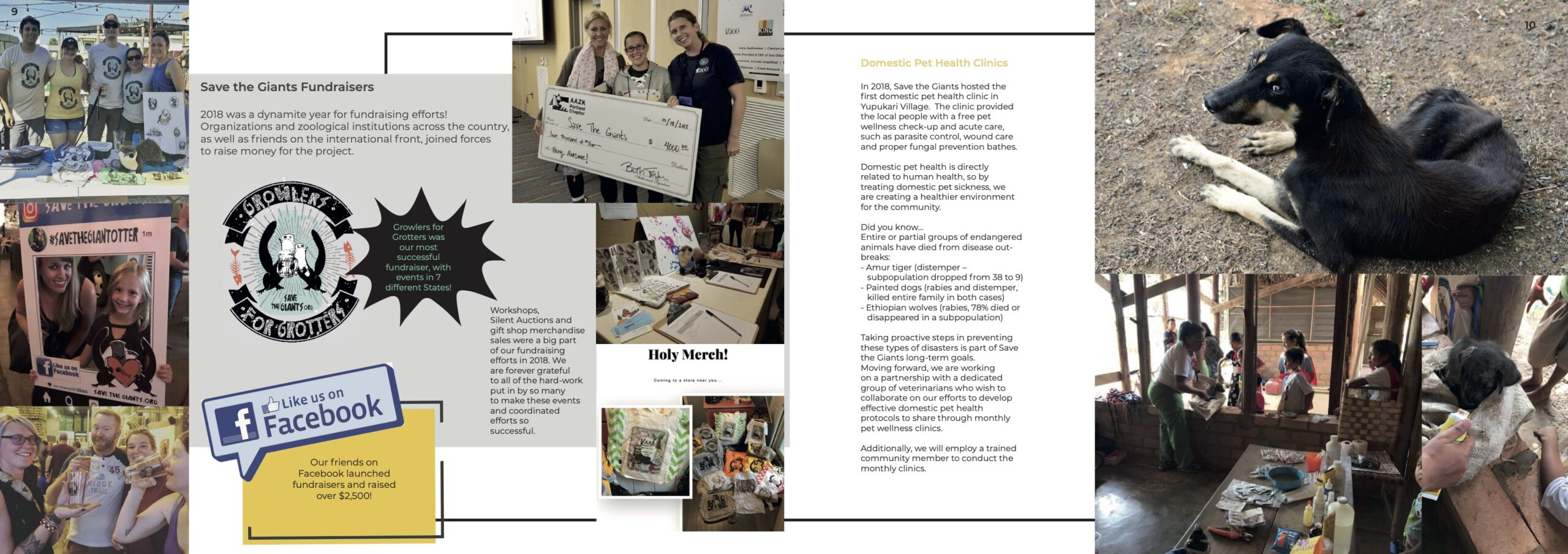 Save the Giants Final Annual Report7