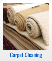 Carpet Cleaning and Stain Removal