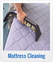 Upholstery and Mattress Cleaning