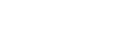 The Storage Acquisition Group