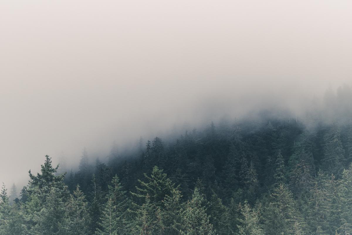 Alaska Fog Photo by Michael Caiati
