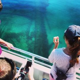"""Alpena's """"Shipwreck Tour"""""""