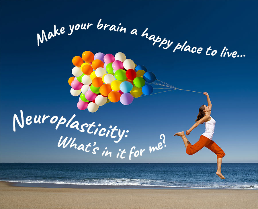Make Your Brain a Happy Place To Live… Neuroplasticity: What's in it for me?