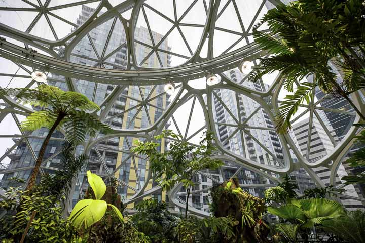 20 Top Things to Do in Seattle in 2020: Amazon The Spheres