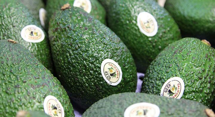20 Top Things to Do in San Diego 2020 Annual Fallbrook Avocado Festival.