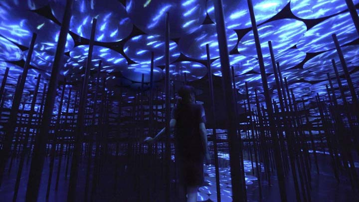Top Things to do in Tokyo in 2020: teamLab Borderless