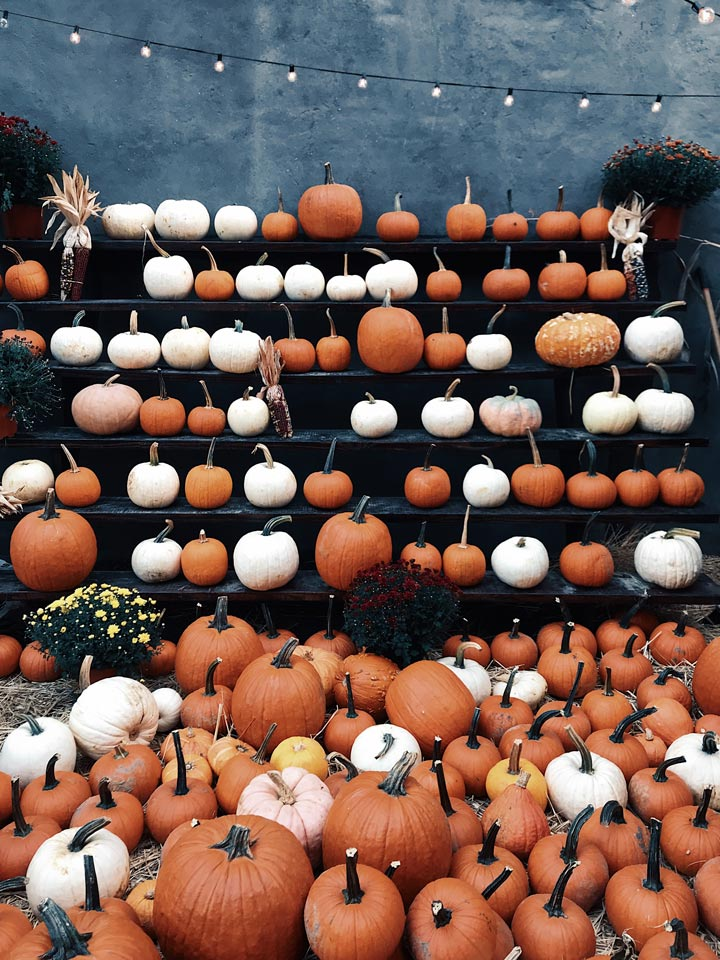 Halloween Events, Attractions, Pumpkin Patches Metro Vancouver & Fraser Valley 2020