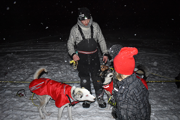 lead musher Tor