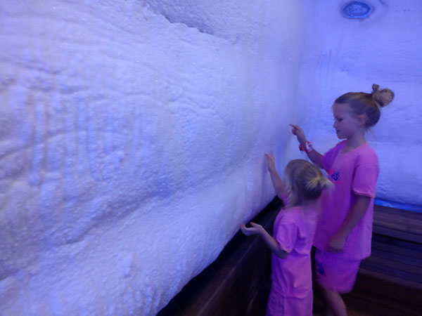 Ice Room at Spasis