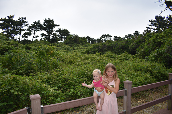 Exploring Waterfalls on Jeju Island with Kids