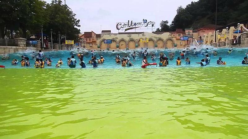 Wave Pool Korean Water Park: Caribbean Bay