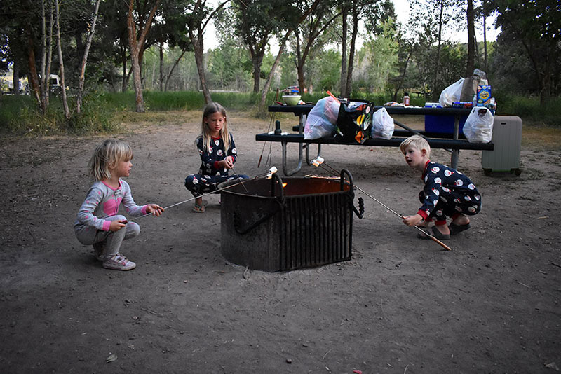Roasting Marshmallows Camping with Chester Luggage