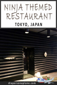 The Best Family Themed Restaurant in Japan! Ninja Akasaka Themed Dinner: Family Restaurant Review in Tokyo, Japan