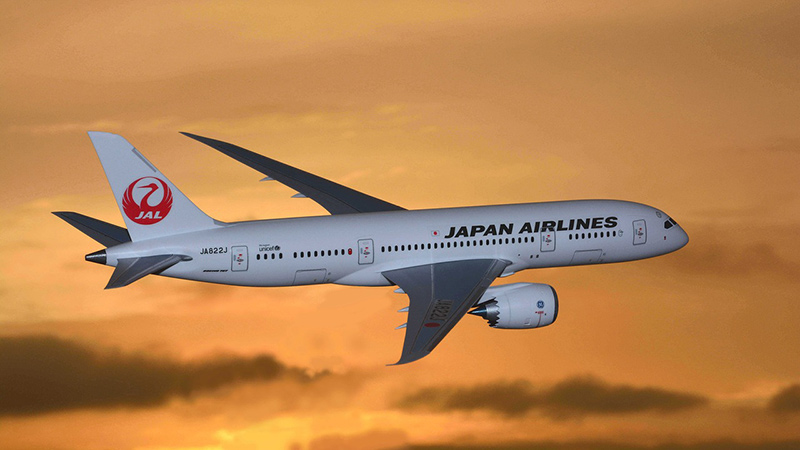 Japan Airlines Airplane