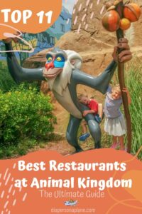 Ultimate Guide to the Top 11 Best Restaurants at Animal Kingdom