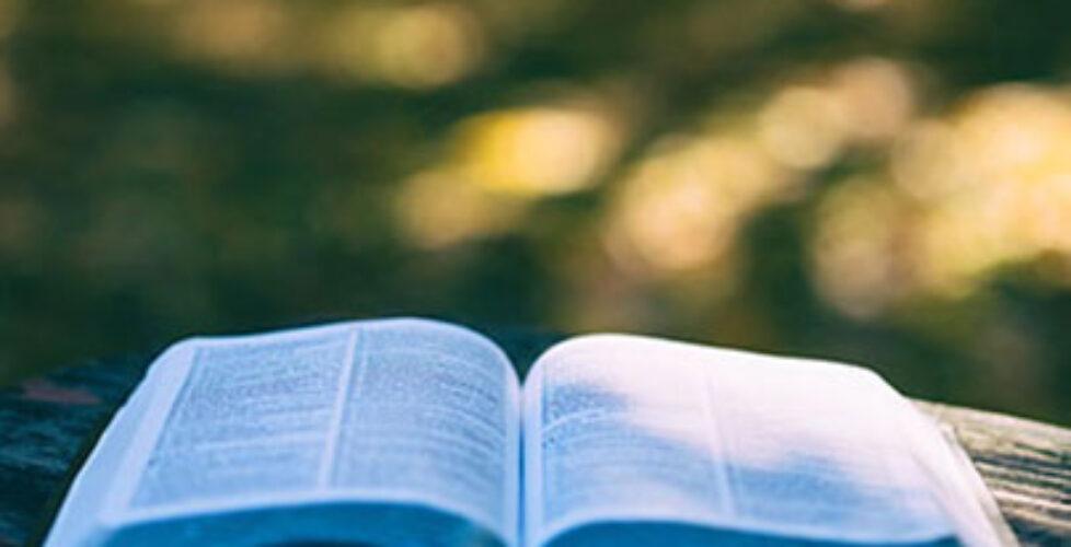 open_bible_v2