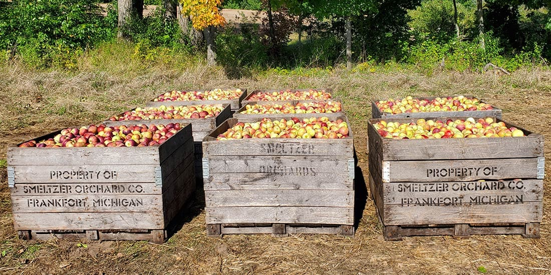 Apples at Farmstand
