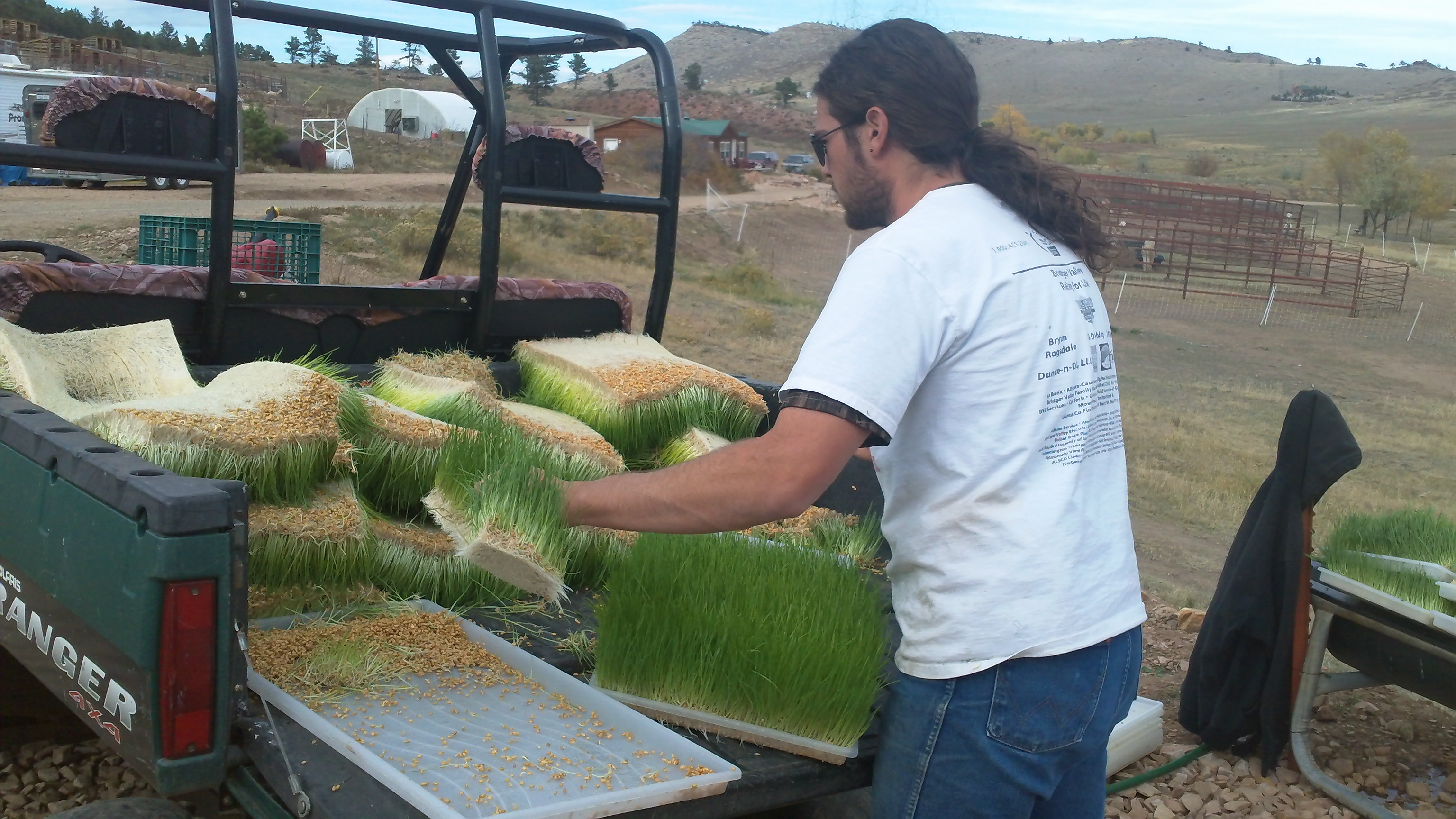 Mountain Sky Micro-Greens – Give Us the Numbers!