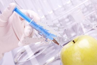 GMO – The Dangers Of Consuming & Producing Genetically Modified Food