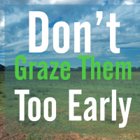 Grazing Tips for Spring – Pasture & Feed Management