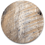 timbers_box