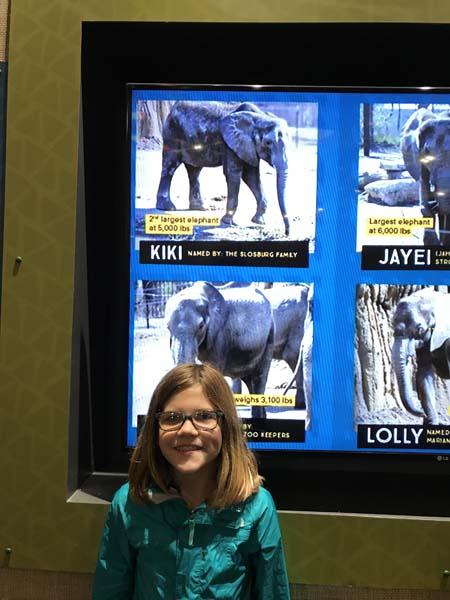 Kiki squared! The elephant & our girl!