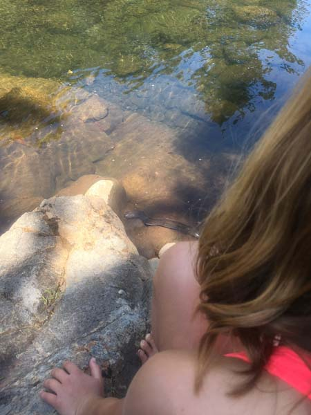 The girls just went swimming in this river - then Mr. Gray called the eels out of their holes! :)