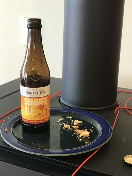 In NZ Santa gets beer & cookies... I believe a new tradition is in order!