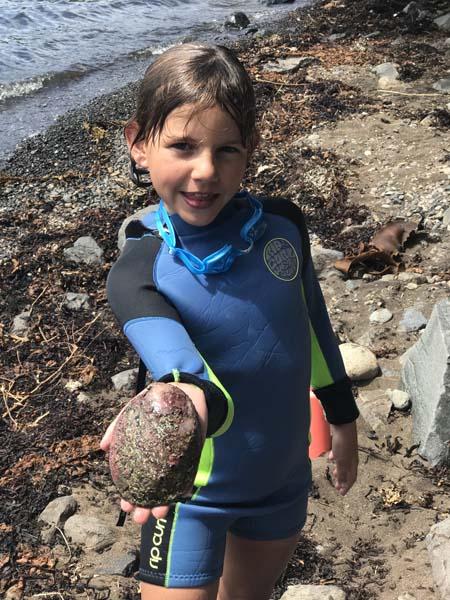 Paua - Abalone diving!