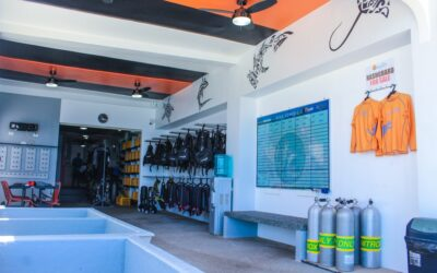 Opening of the new LLV Divers