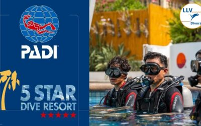 PADI 5 Star Dive Resort – LLV Divers