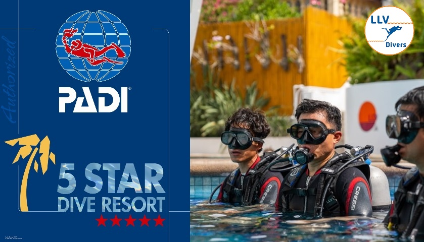 PADI 5 Star Dive Resort – LLV Divers