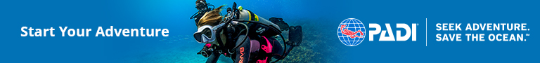 Start Your PADI Diving Adventure with LLV Divers at Lalaguna Villas