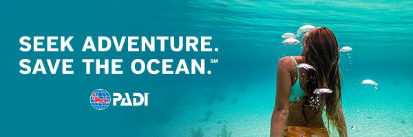 Start Your PADI Diving Adventure