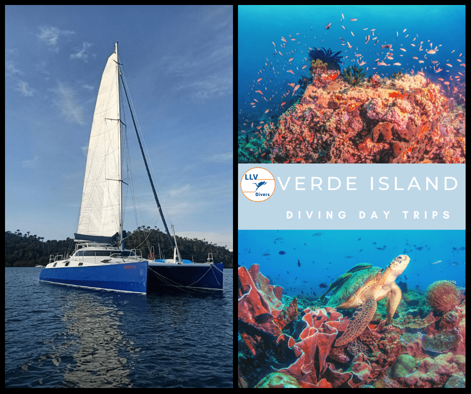 LALAGUNA VILLAS CATAMARAN  VERDE ISLAND - DIVING DAY TRIPS