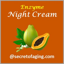Enzyme Night Cream by Secret of Aging
