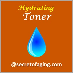 Hydrating Toner by Secret of Aging