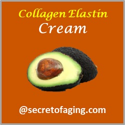 Collagen Elastin Cream by Secret of Aging