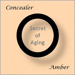 Amber Concealer by Secret of Aging