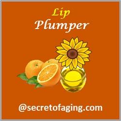 Lip Plumper by Secret of Aging