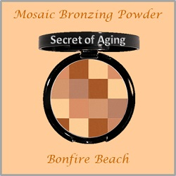 Bronzing Powder - Mosaic