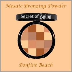 Bronzing Powder - Mosaic
