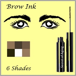 Brow Ink in 6 Shades by Secret of Aging