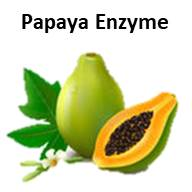 Papaya Enzyme by Secret of Aging