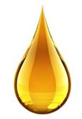 Excessive Oil by Secret of Aging