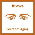 Brows Image by Secret of Aging