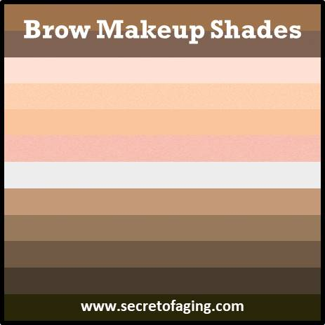 2021 Brow Makeup Shades by Secret of Aging